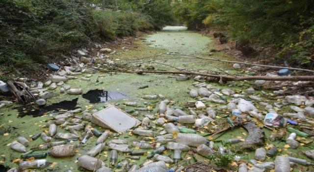 Kuraklıktan yeşile bürünen Bayır Deresi, çöplüğe döndü