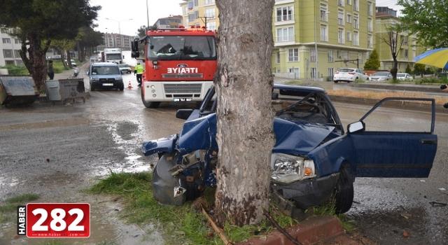 Tekirdağ'da ağaca çarpan otomobildeki 2 kişi yaralandı