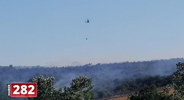 Tekirdağ'da orman yangını başladı