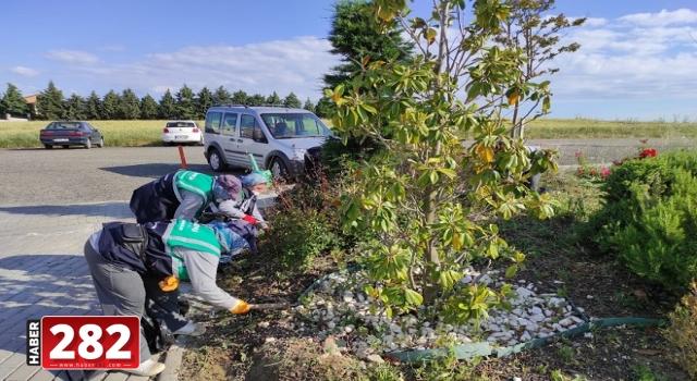 Ekipler daha yeşil bir Süleymanpaşa için çalışıyor