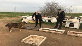 Kaymakam Taşçı ve Başsavcı Yiğiter sokak hayvanları için beslenme noktalarına mama bıraktı