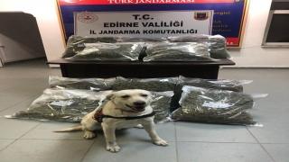Edirne'de uyuşturucu operasyonları