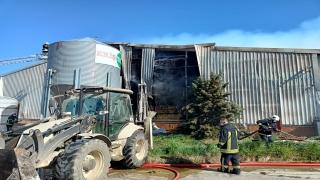 Kırklareli'nde hayvan çiftliğinde çıkan yangına müdahale ediliyor