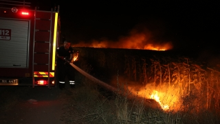 Edirne'de anız yangının sıçradığı ayçiçeği tarlaları zarar gördü