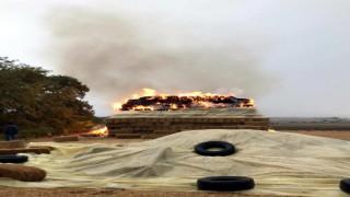 Lüleburgaz'da yıldırım isabet eden saman balyaları yandı
