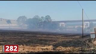 Malkara'da anız yangını